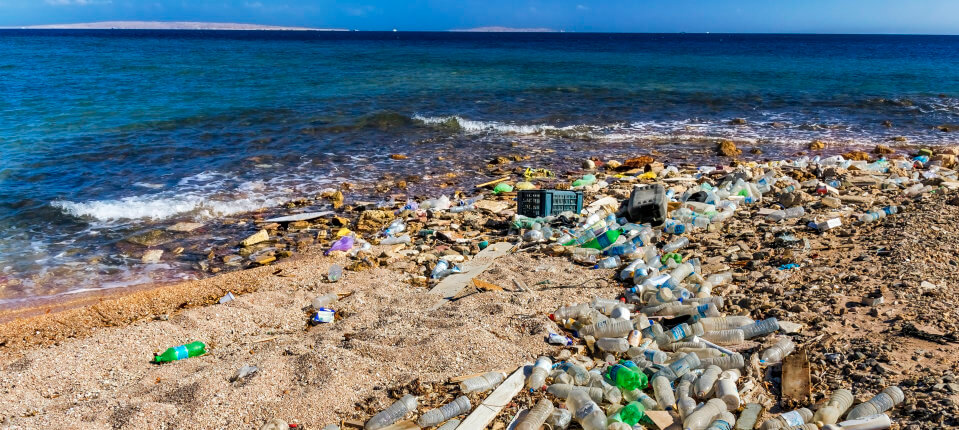 【海洋污染】衫都可以「走塑」?